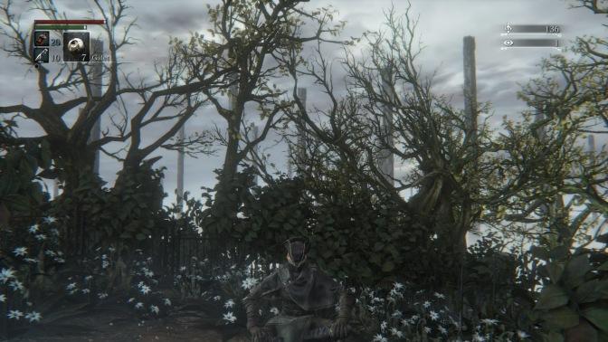 Bloodborne™_20150327231717
