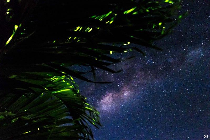 Photo Voie Lactée 02 - XE